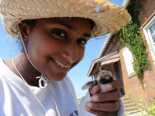 Rani Jacobson with a tern chick. Credit: Venice Wong