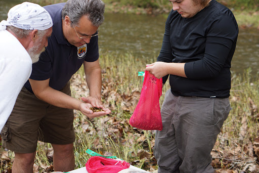Biologist Jess Jones distributes mussels. Credit: Gary Peeples/USFWS