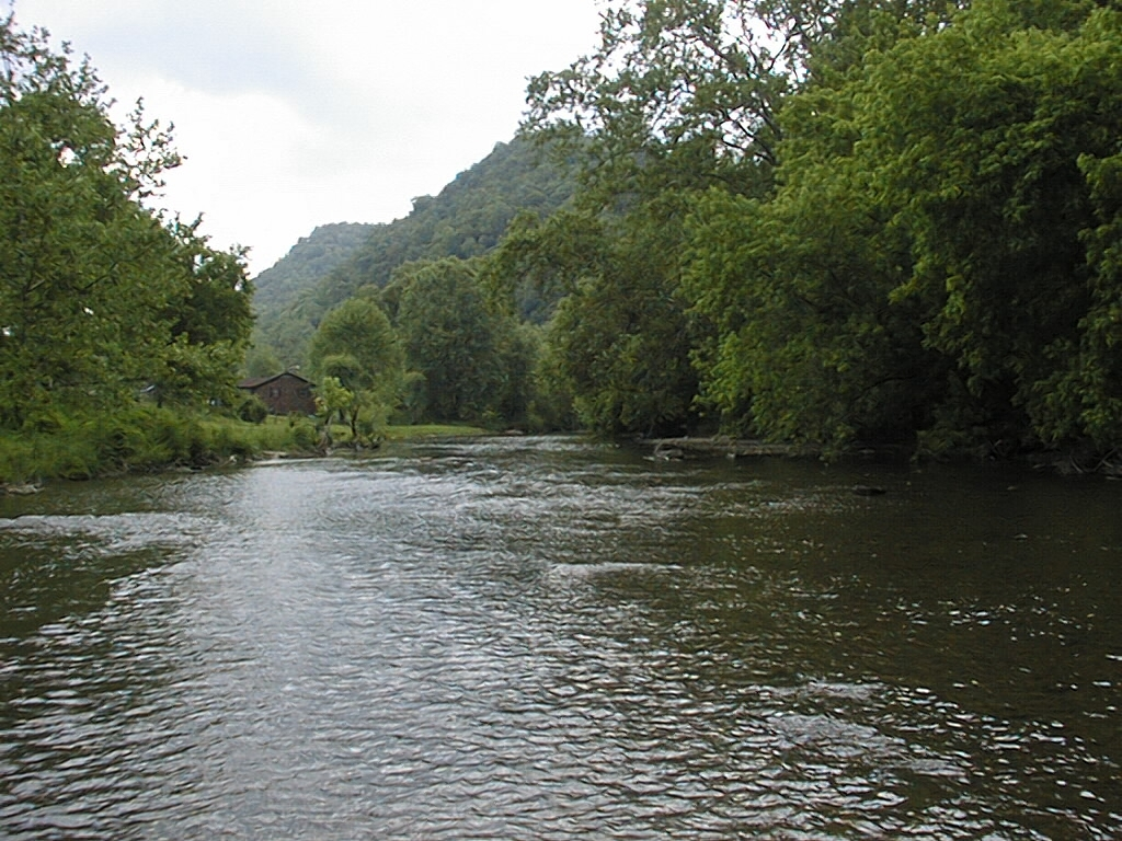 Recovering the wild from a wild river taking a look back for Clinch river fishing