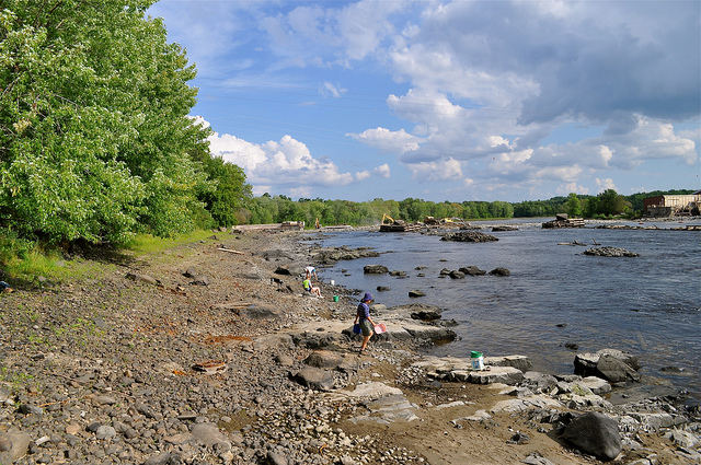 Beautiful shoreline of the Penobscot River. Credit: Cheryl Daigle/Trust