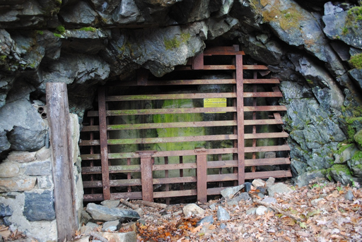 A gated cave in New Jersey. Credit: USFWS/Eric Schrading