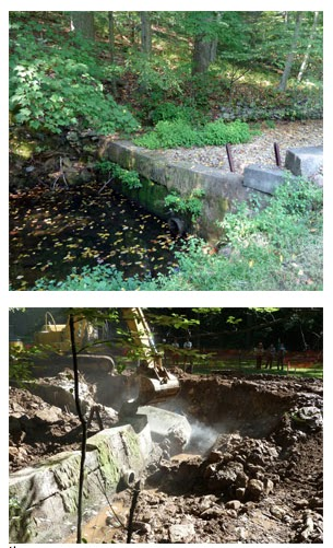 Clifford Branch dam before (top) and during removal (bottom). Credit: Conor Bell/USFWS