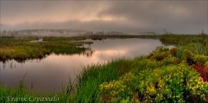 Sunrise at Beaver Pond