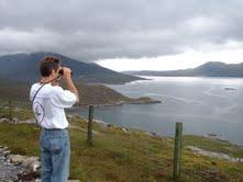 randy dettmers birding in scotland