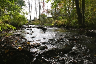A project at Sedgeunkedunk Stream in Orrington has reconnected sea-run fish in this stream to 1,300 acres of pond habitat. Credit: USFWS