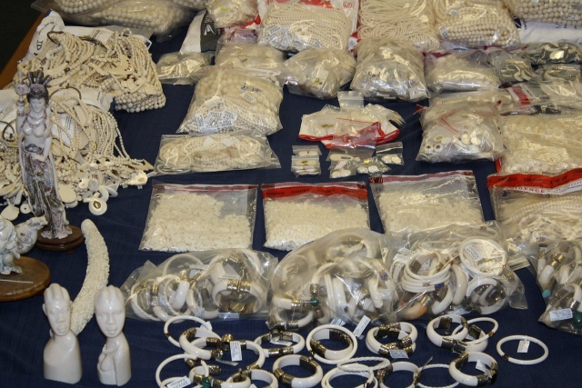 Hundreds of seized ivory jewelry and carvings on a black tablecloth