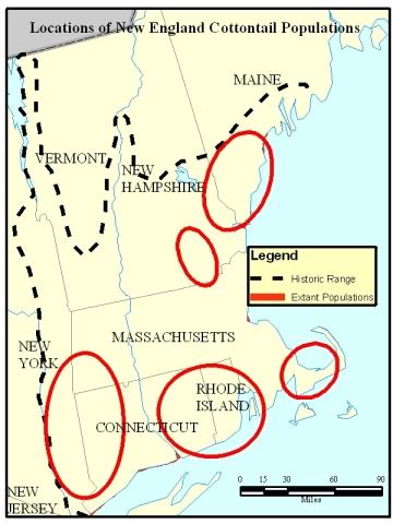 NEC Locations