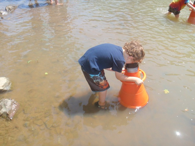 Child looking for stream critters through a view tube during a James spinymussel outreach event. Credit:  USFWS