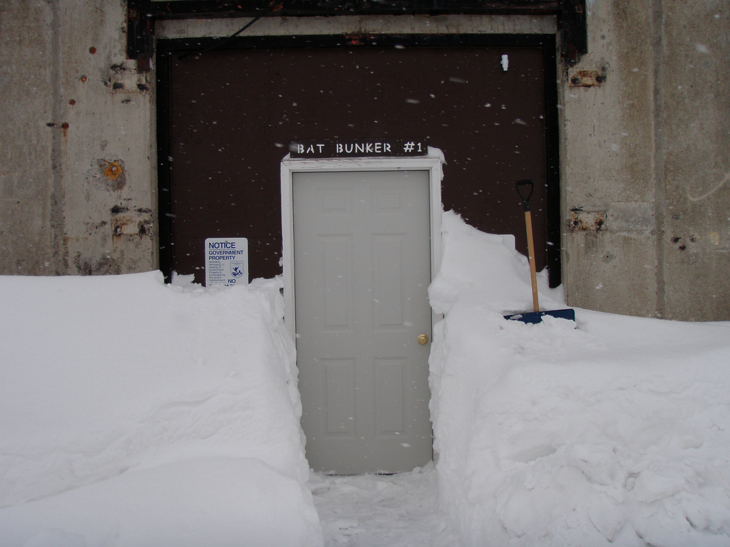 Bat Bunker #1 on a door surrounded by snow.