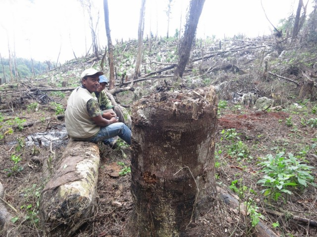 Esteban Garrido and Jesus Almonte surveying recently cleared cloud forest. From the original VCE blog, courtesy of  Yolanda Leon.