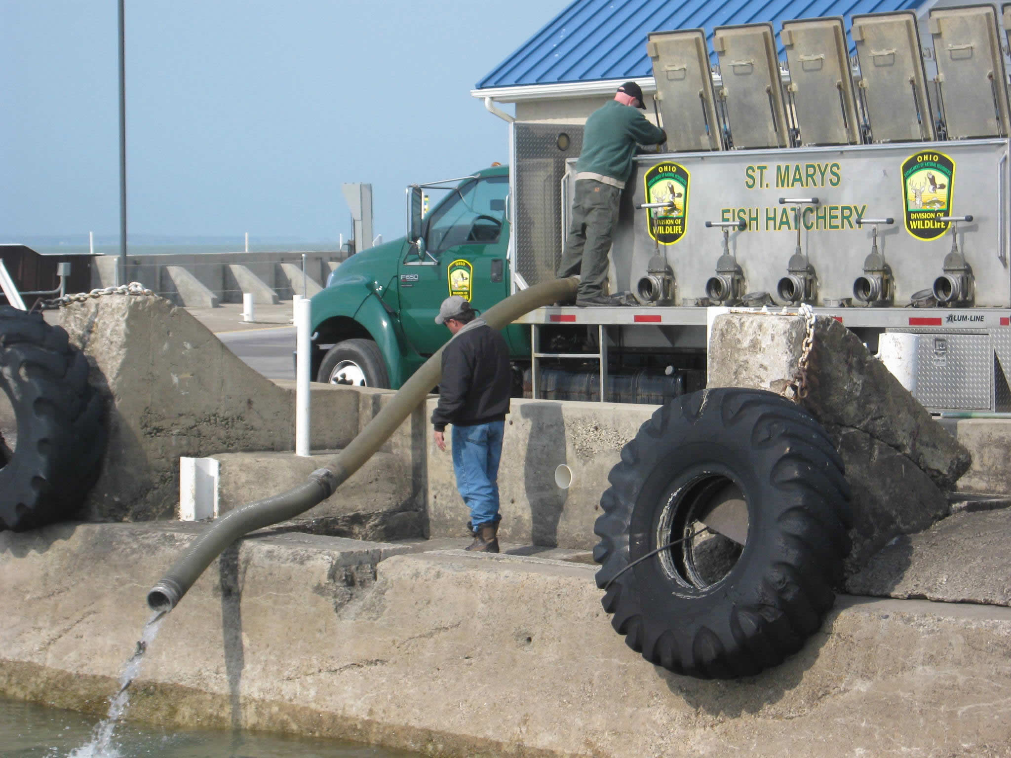 Taking stock in the future of lake trout u s fish and for Fish hatchery ohio