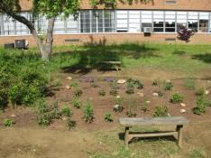 Our Chesapeake Bay Field Office has led Hillsmere Elementary School in Annapolis, Md., to transform their expansive schoolyard into a native plant habitat beneficial to pollinators over the past 5 years.