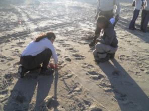 Measuring width of crawl tracks.