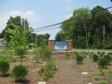 New native landscape at Hillsmere Elementary