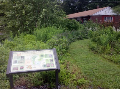 The pollinator garden at North Attleboro National Fish Hatchery in Massachusetts. Credit: USFWS