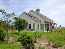 The pollinator garden at the Edwin B. Forsythe National Wildlife Refuge in New Jersey