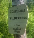 scapegoat sign
