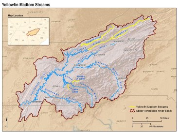This map shows all the streams where yellowfin madtoms can be found. Created by Kurt Snider, USFWS.