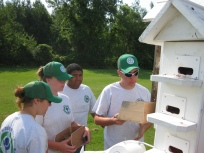 A YCC crew helps to check purple martin houses at Iroqouis National Wildlife Refuge.
