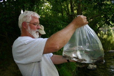 J.R. Shute, co-director of Conservation Fisheries, Inc., holds up a bag of yellowfin madtoms. Credit: Shane Hanlon/USFWS
