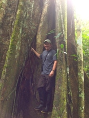 John standing by a giant Renaco tree. Photo courtesy of John.