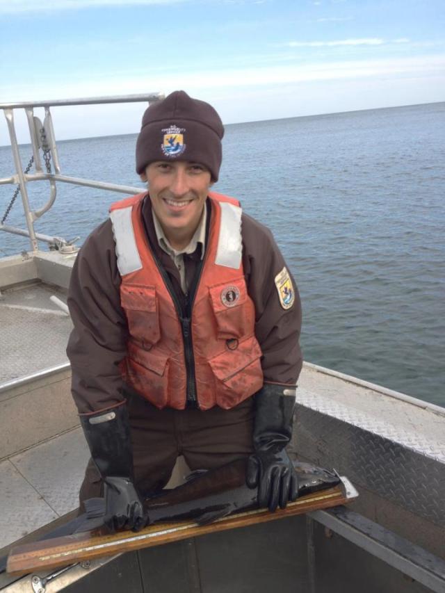 Salmon measure