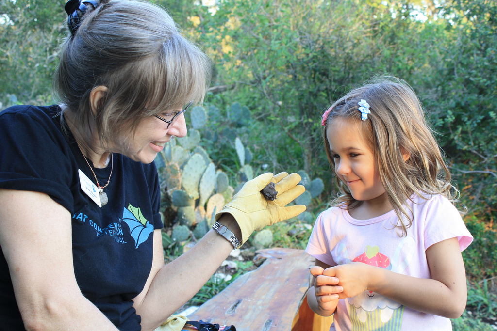 BCI educator Dianne Odegard shows visitor a Mexican free-tailed bat. Credit: USFWS/Ann Froschauer
