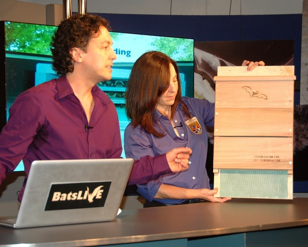 Rob Mies (Organization for Bat Conservation) and Ann Froschauer (USFWS) talk about bat houses on the BatsLIVE! Distance Learning Adventure. Credit: USFS/Sandy Frost