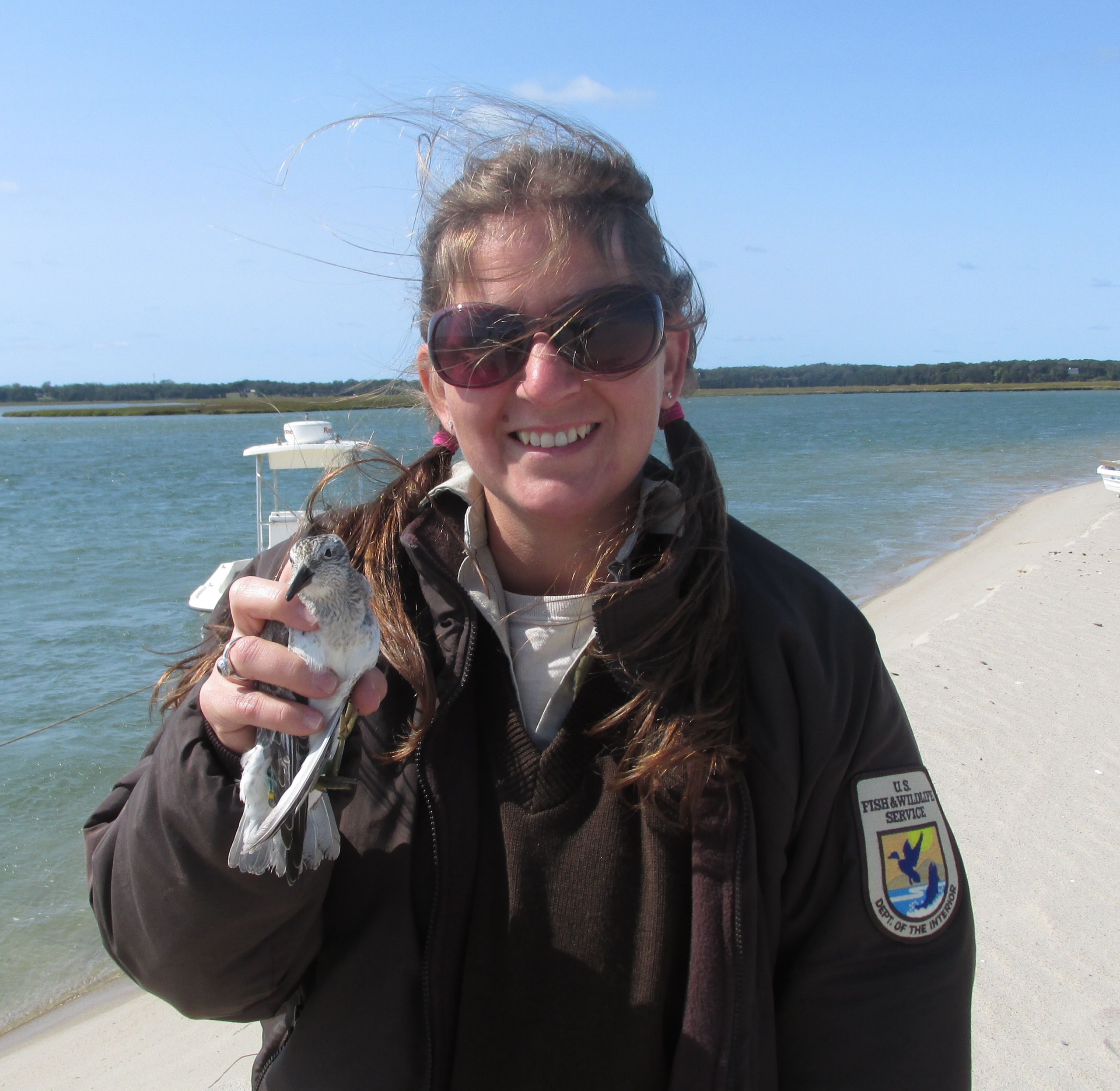 Stephanie Koch holds a red knot on Cape Cod in Massachusetts. Credit: Meagan Racey/USFWS