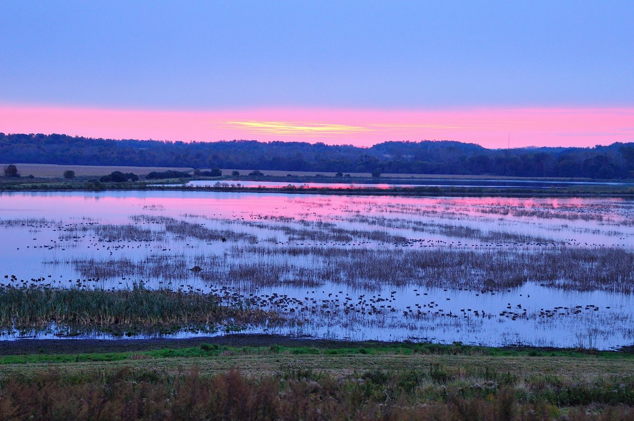 Sunrise. Credit: USFWS