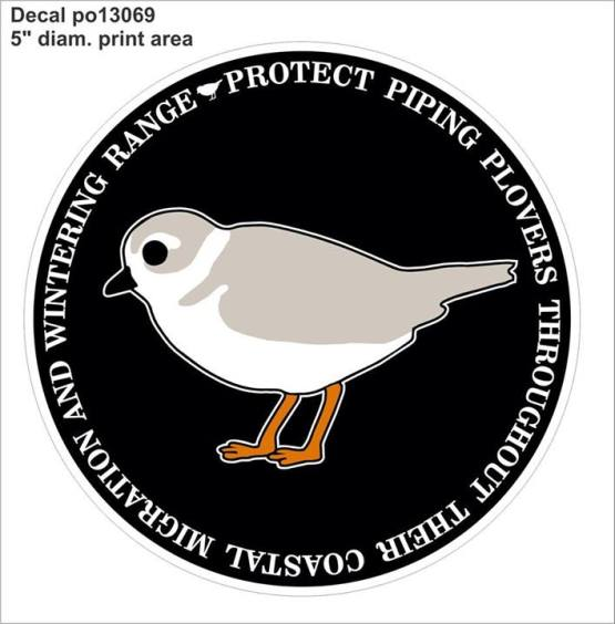 This decal, designed by one of our biologists, shows a plover in nonbreeding plumage (a bill that is entirely black, no brow or neck band). Some Atlantic Coast adults begin to look like this towards the end of breeding season, as do recently fledged hatch-year birds.