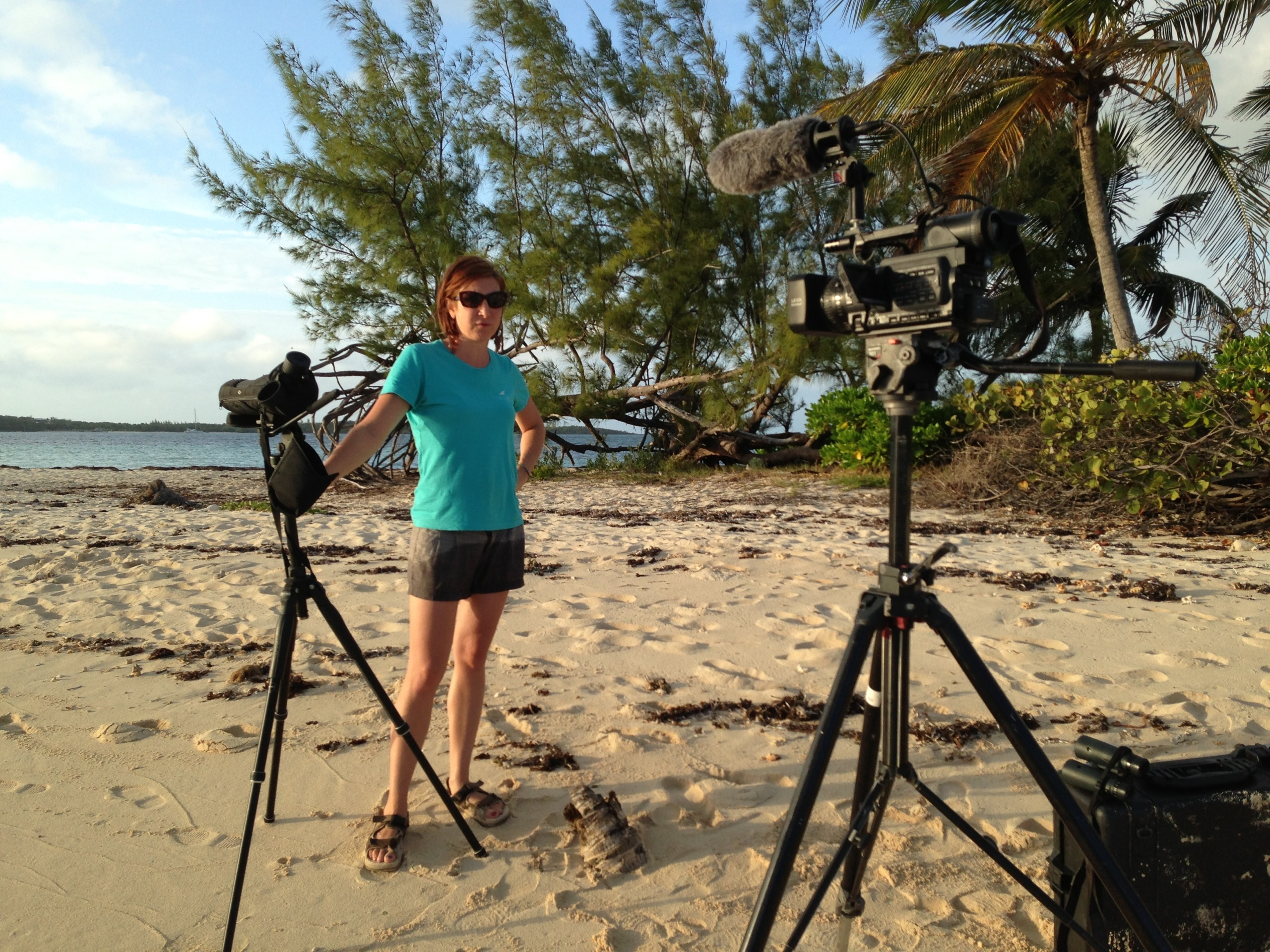 Stephanie Egger filming on location in the Bahamas. Photo from Conserve Wildlife Foundation of New Jersey.