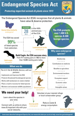 Check out our endangered species infographic!
