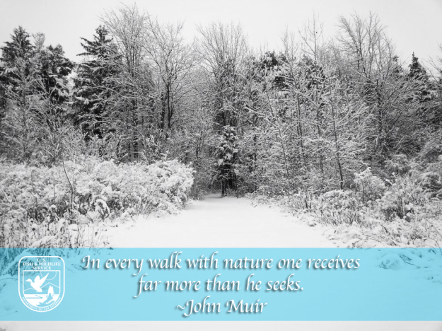 A quote from John Muir and snowy landscape photo.