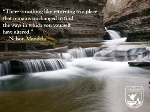 There is nothing like returning ti a place that remains unchanged to fing the ways in which you yourself have altered. -Nelson Mandela