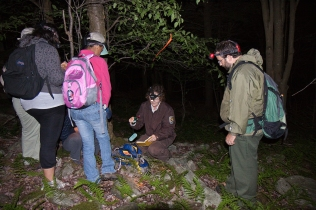 Service staff, volunteers from the local community and The Nature Conservancy during a a night survey to capture Cheat Mountain salamanders. The data is used to determine the population on the refuge. Credit: Kent Mason
