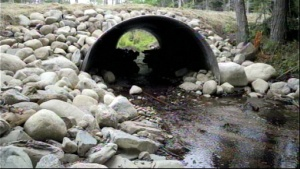 Fish-friendly culverts provide ample room for passage and reduce the likelihood of damage to road stream crossings from future floods.