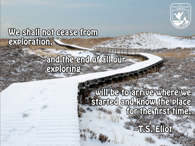 We shall not cease from exploration, and the end of our exploring  will be to arrive where we started and know the place for the first time.