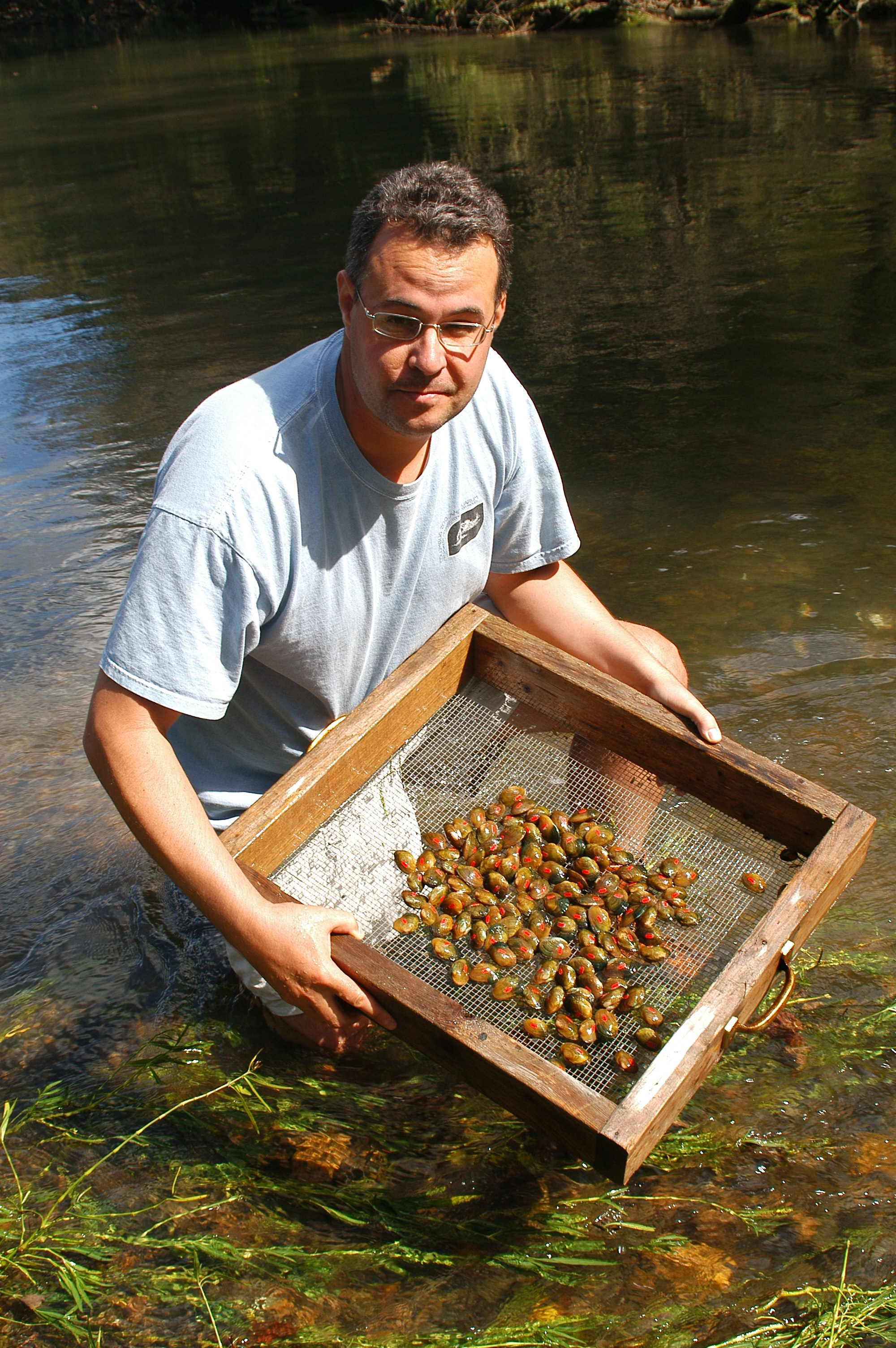 Biologist Jess Jones of our Virginia field office just received the Rachel Carson Award for Scientific Excellence. Jess is a national leader in freshwater mussel conservation. Credit: USFWS