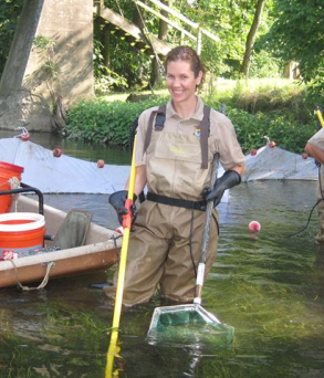 In today's post, Sheila Eyler, fishery biologist and Project Leader for the Mid-Atlantic Fish and Wildlife Coordination Office, shares her success in working with American eel populations on the Susquehanna River.