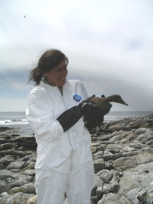 Molly Sperduto holding a common eider in Maine. Photo courtesy of Molly.