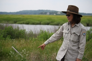 Nancy Pau, wildlife biologist at Parker River Refuge, points out the white flowers of pepperweed, an invasive species plant which has been the focus of a long-term removal project in the Great Marsh. Credit: Margie Brenner/USFWS