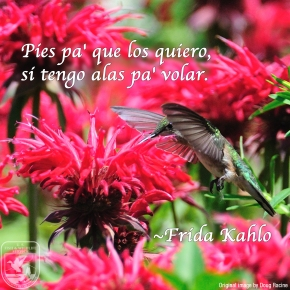 Wednesday Wisdom – Frida Kahlo
