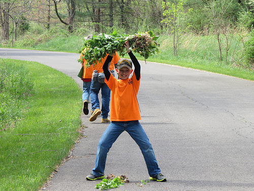 A Petersburg (Virginia) Elementary School student proudly displays his first garlic mustard haul. Volunteers are key to the removal of invasive species, such as the garlic mustard. Photo from U.S. Forest Service.