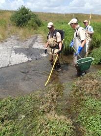 Surveying the stream! Credit: USFWS