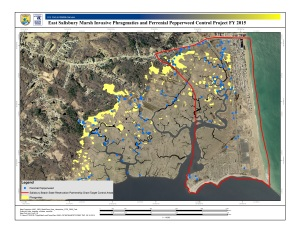 A map of invasive species near the Parker River Refuge and neighboring communities is used to target areas for salt marsh restoration. Credit: USFWS
