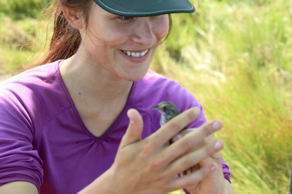 Jeanna Mielcarek, a research specialist, handles a newly caught sparrow. Credit: Charlotte Murtishaw/USFWS