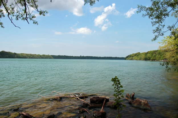 View from the shoreline at Stella Niagara. Photo credit: Western New York Land Conservancy
