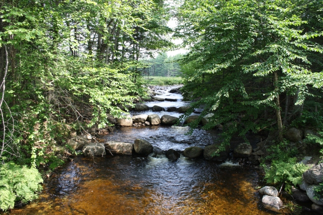 A natural rock weir created on Penobscot Indian Nation land to help fish pass up and down stream. Photo credit: USFWS