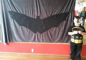 Bat bonanza in WestVirginia